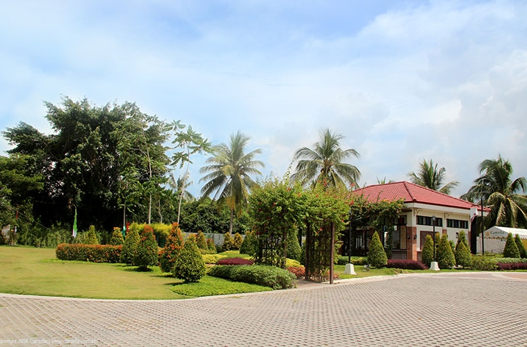 Camella Prima Koronadal garden, trees, and plants